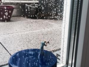Miniaturisier und Regentropfen klopfen als Fenster