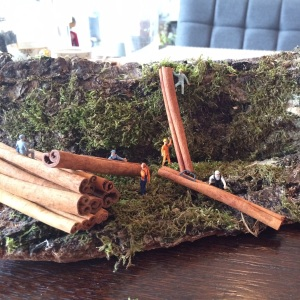 Miniaturisieren mit Zimtstangen als Baumstämme