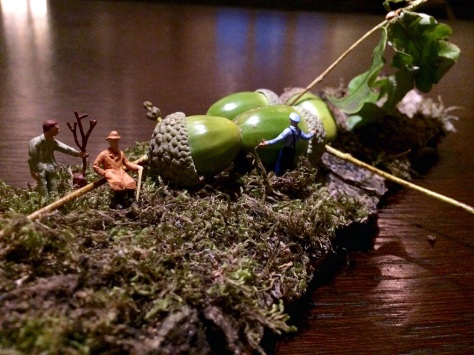 Eicheln mit Miniaturopa