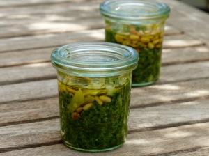 Bärlauchpesto im Glas mit Olivenöl versiegelt