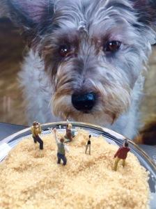 Miniaturfotografen vor einem Hundekopf
